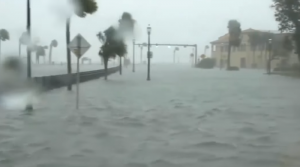 protect yourself from the next hurricane with seeman holtz