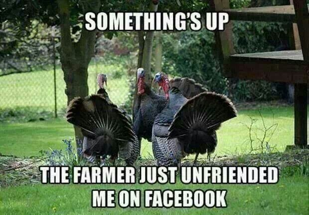 funny-thanksgiving-images-2015