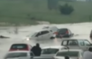 flood waters take over cars - seeman holtz