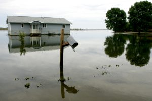 homeowners insurance for flooding - seeman holtz