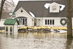 homeowners insurance from seeman holtz